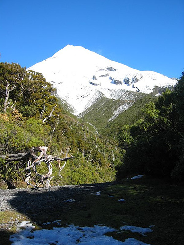 View of Mt Taranaki from the Summit Track