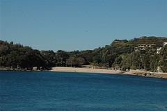 Coromandel Shelly Beach