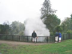 rotorua's kuirau park